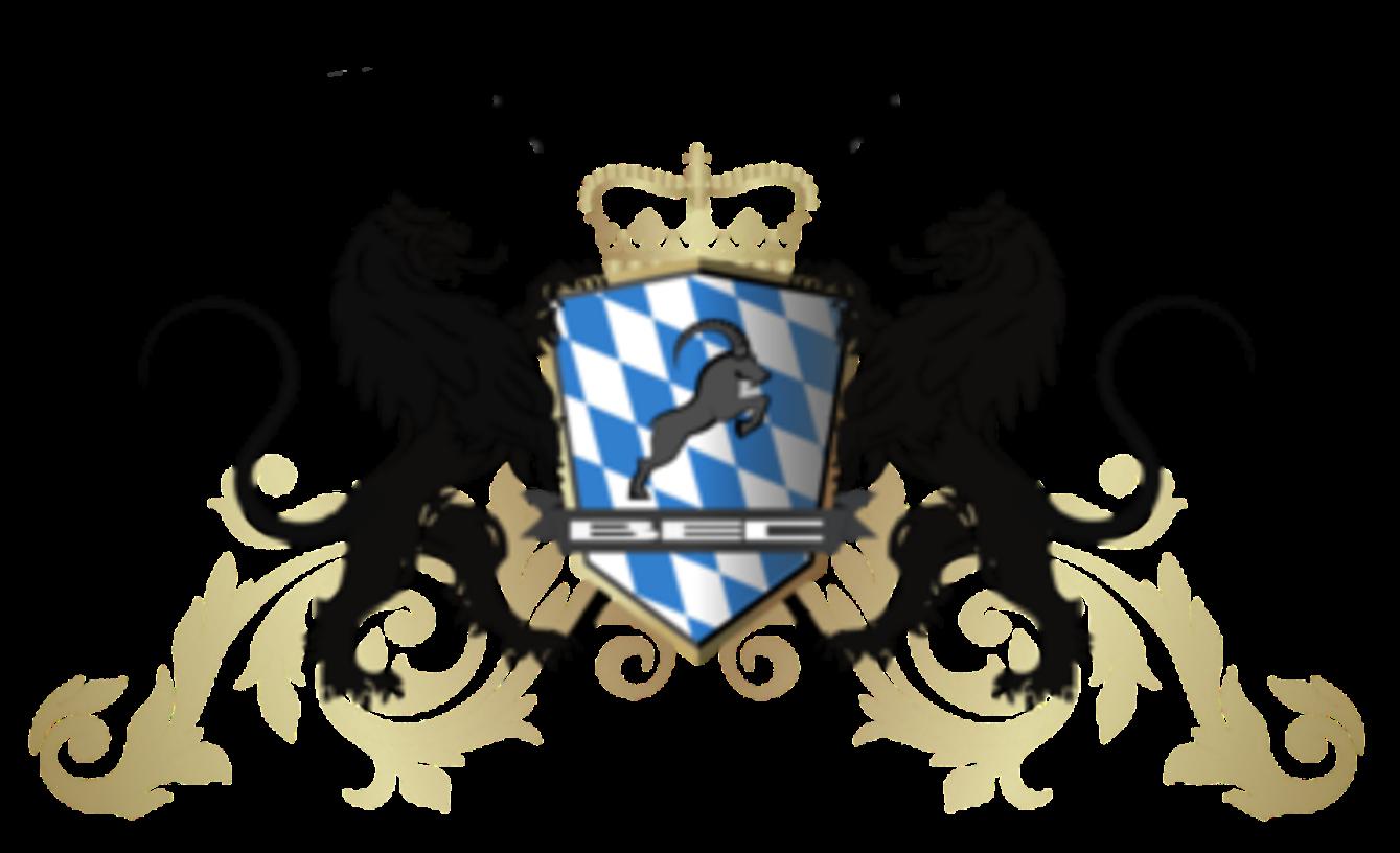 Bavarian ebikes